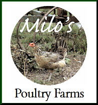 Milo's Poultry Farms